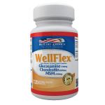wellflex