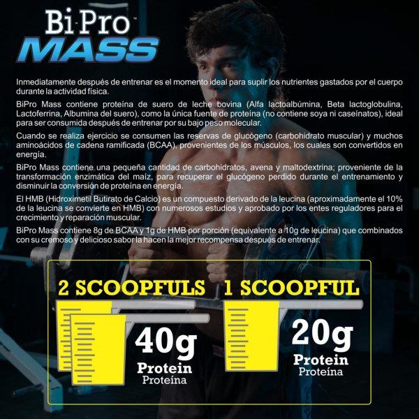 mass-bipro-1